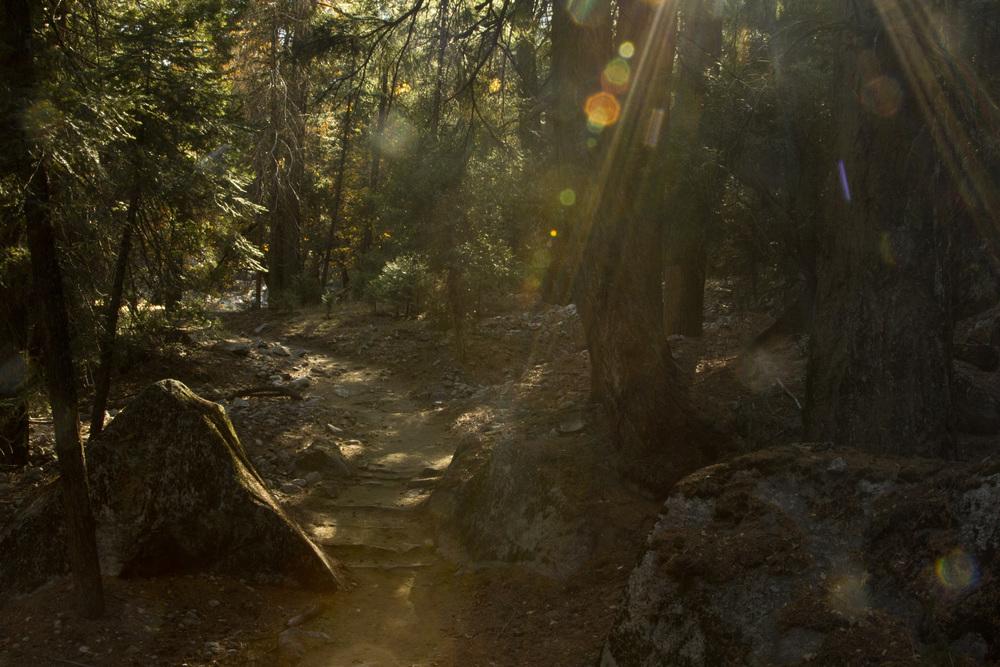 Take the Trail to Mirror Lake