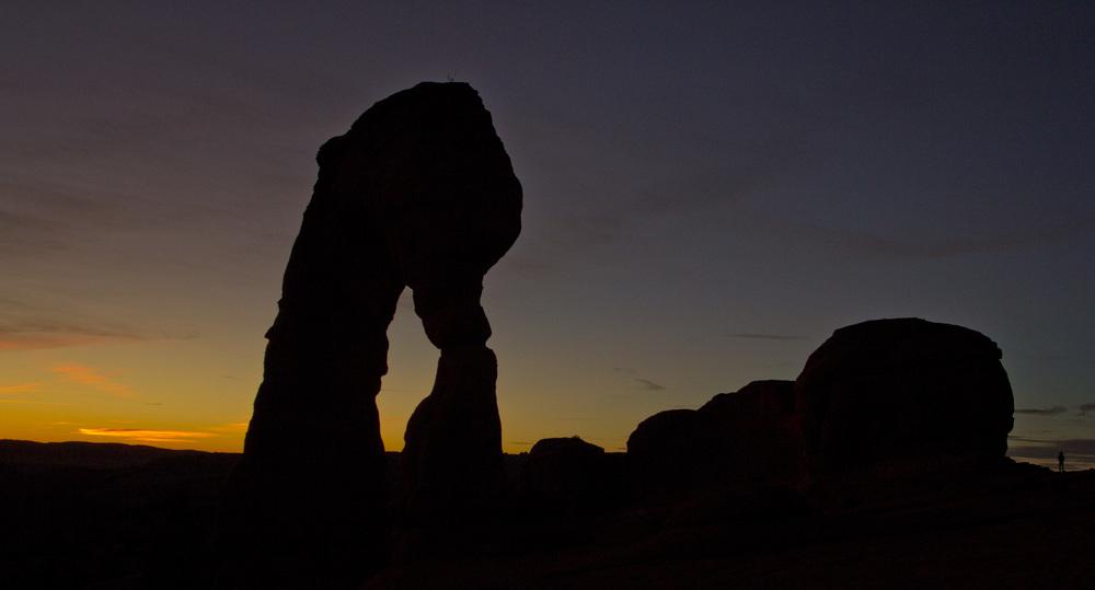 A Delicate Silhouette