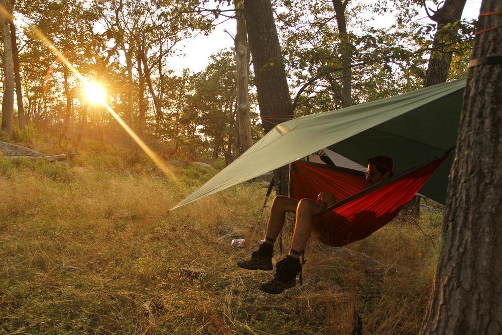 Prime hammock relastate in the vicinity of Sun Fish Pond, NJ.