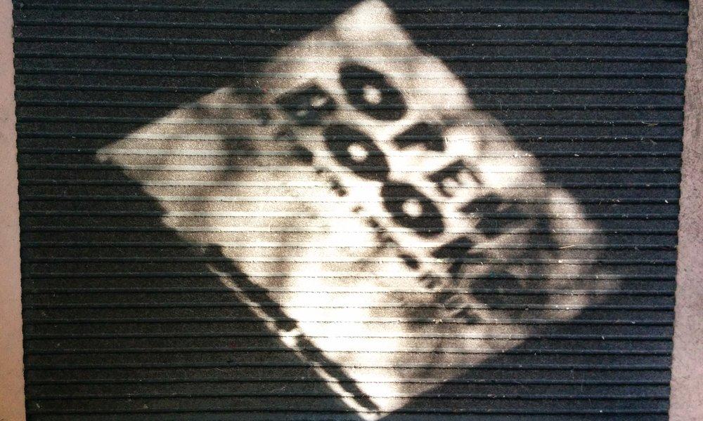 openbooks-photo.jpg