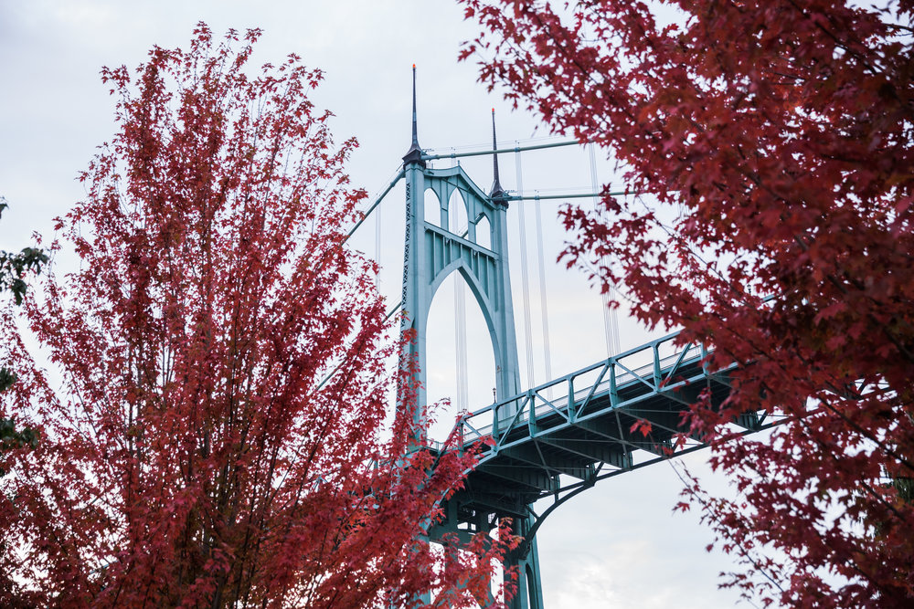 St Johns Bridge with Red Leaves.jpg