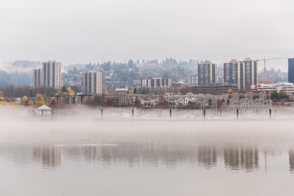 Foggy River Bank_High res for print.jpg