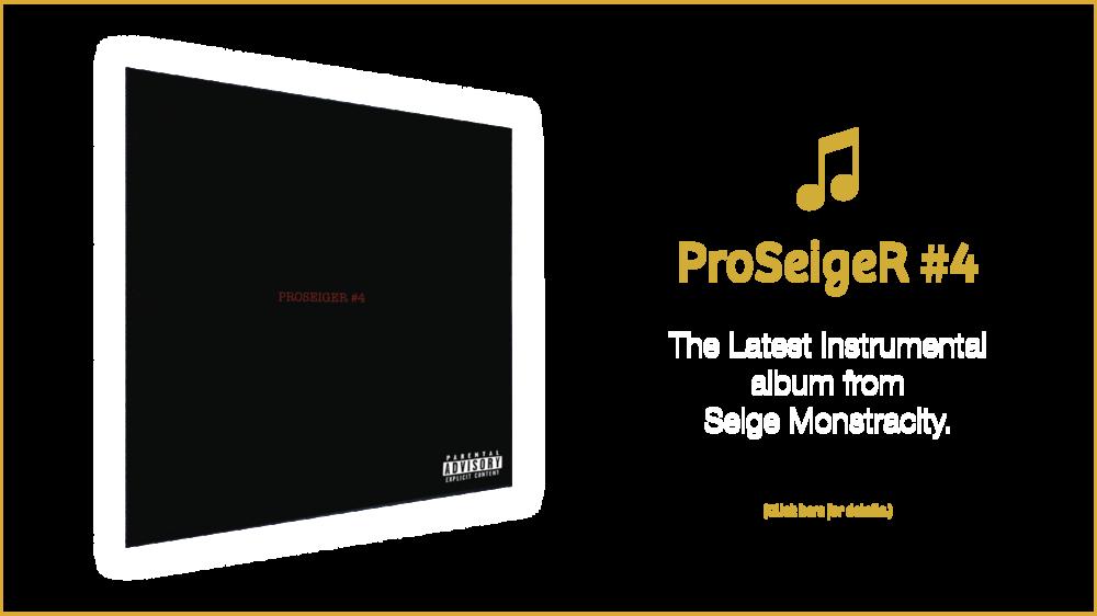 seige_slide_pro4.png
