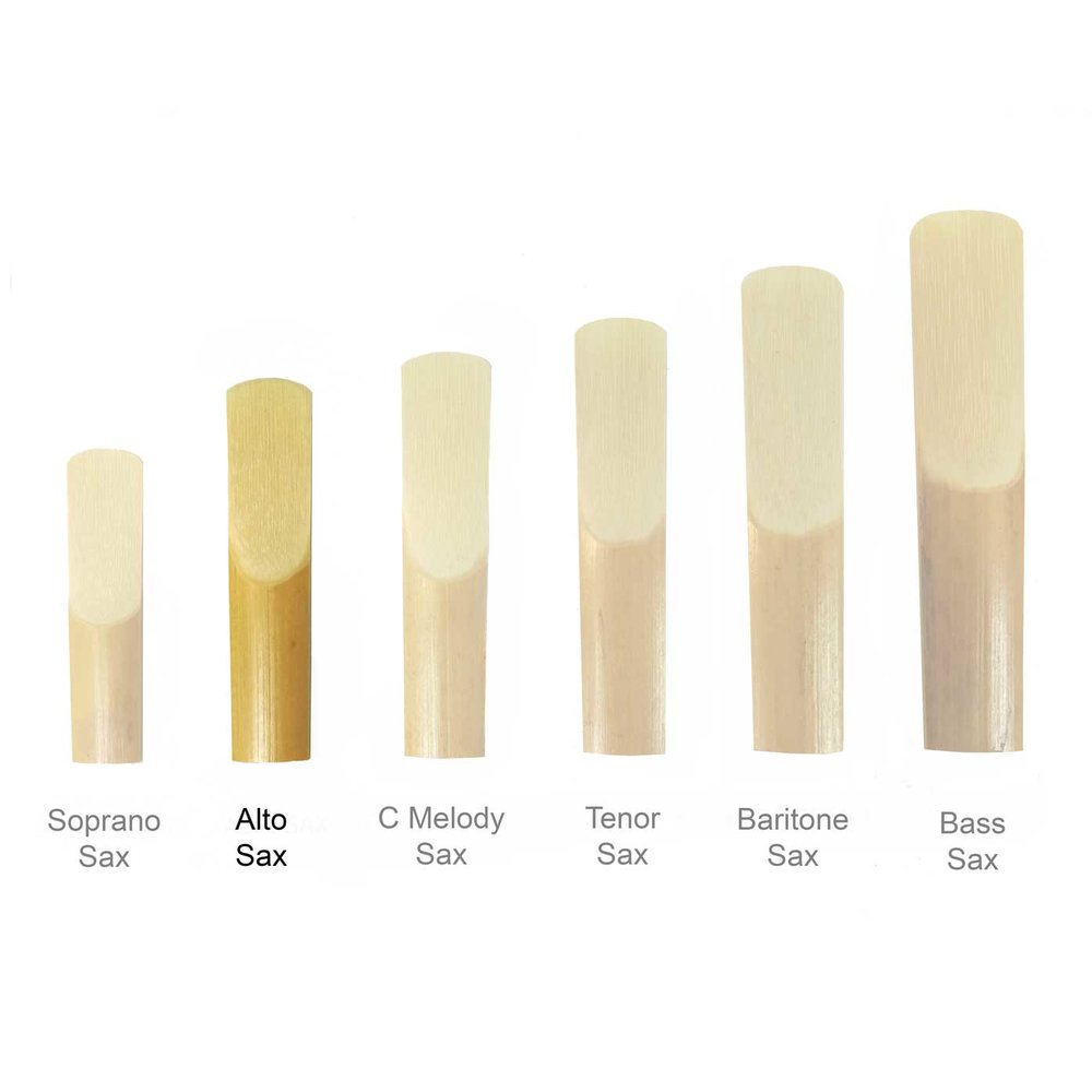 Maccaferri-Sax-Reeds-All-Sizes-alto-sax-reed.jpg