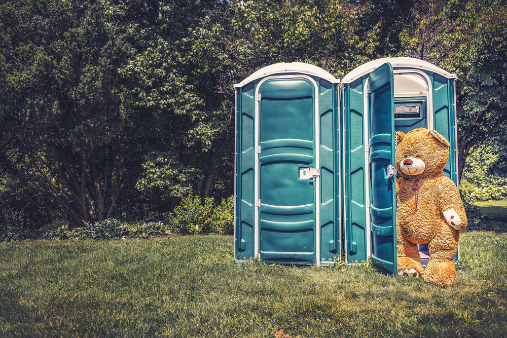 In a million years, I would never post pictures of my students, especially ones I'm poking a little fun of. And, I'd probably not post pictures of my tiny veins or the gross inside of my mouth; but, this bear coming out of an outhouse, I thought folks might like to see that because, hell, he's cute and thought-provoking. He answers, if not the age-old question of whether a bear shits in the woods, whether or not they shit in a field, surrounded by woods. The answer is no: they shit like gentlemen, in an outhouse. See, proof! (Although not obligated, I must give credit to the cool photographer who took this: Ryan McGuire)