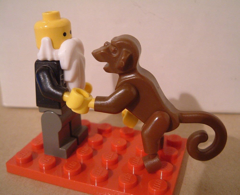 Who doesn't like Legos  and  Darwin? Bad people. That's who.   Photo Credit:  https://www.flickr.com/photos/kaptainkobold/