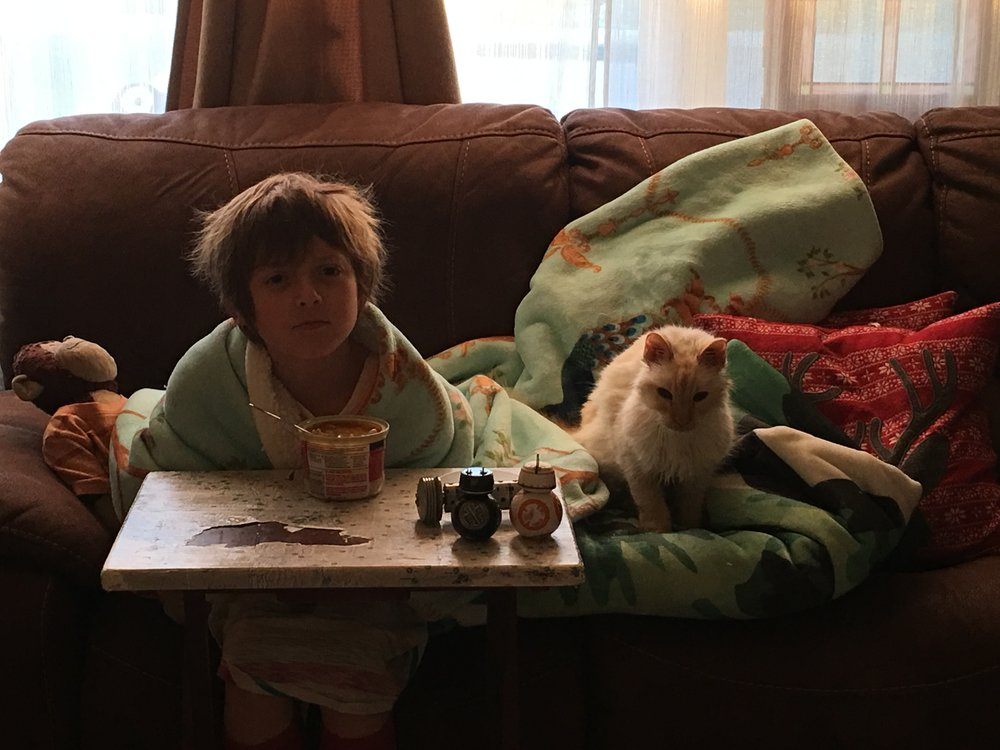 Willow took a keen interest in Collin's new favorite food, Cambell's instant cup-o-soup. When we pointed out that they smell a lot like cat food, Collin wasn't amused.