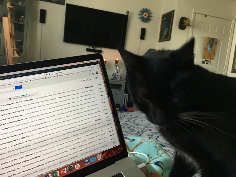 It's so hard to take pics of black cats! But, this is Mittens getting to know my gmail. Clearly, I have a problem with deleting unread messages.