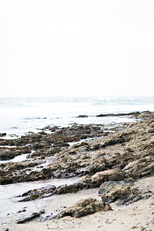 Adriana Klas Photography-257.jpg