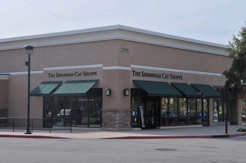 A1Savannahs The Savannah Cat Shoppe