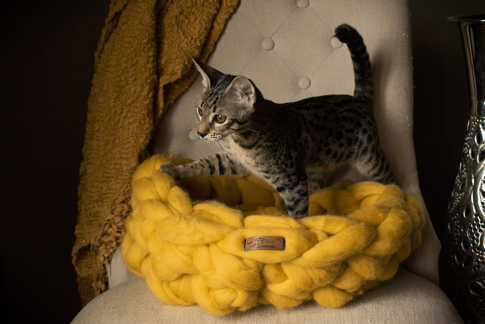 Merino Wool Cat Bed - Merigold