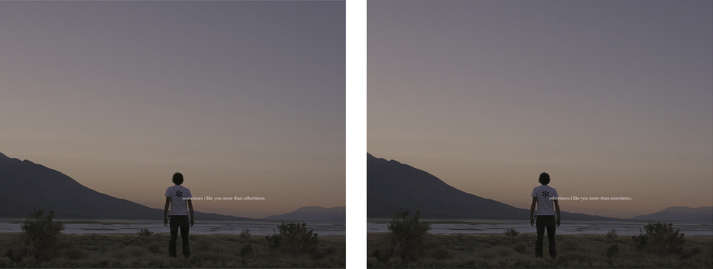 "like you, 2008  chromogenic prints, diptych, 50.8cm x 40.6cm / 20"" x 16"""