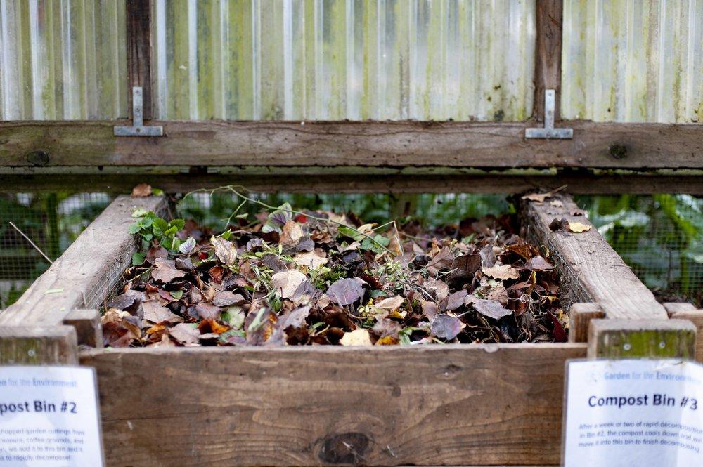 The compost bins at GFE.