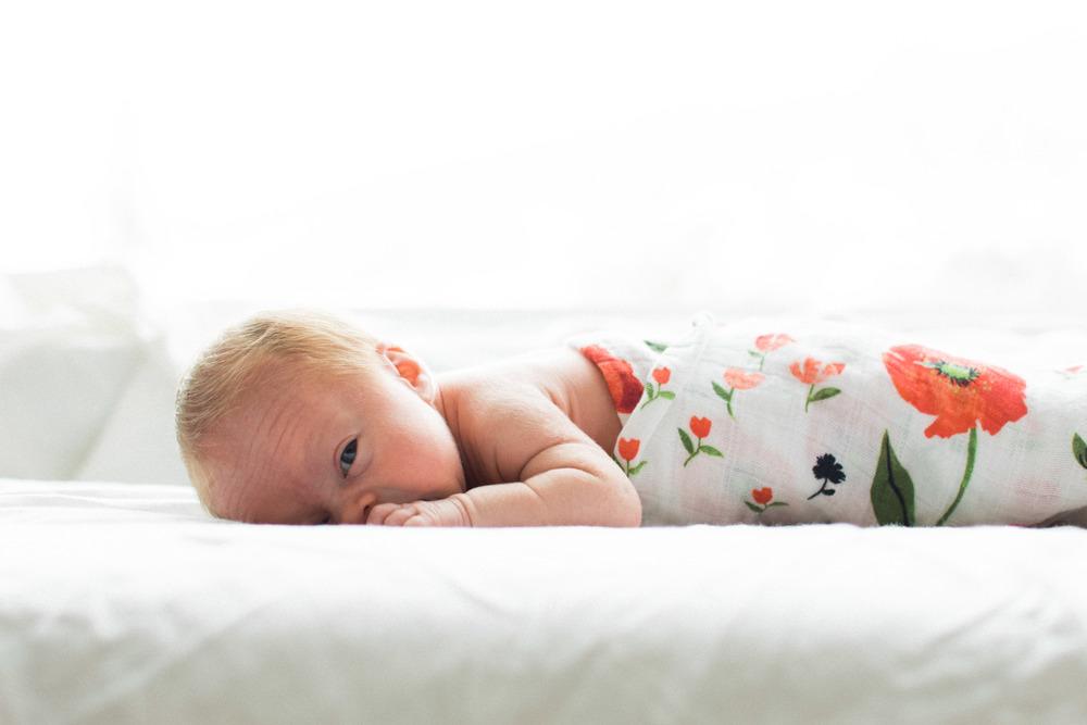 Newborn Photographer, Davis County, Utah