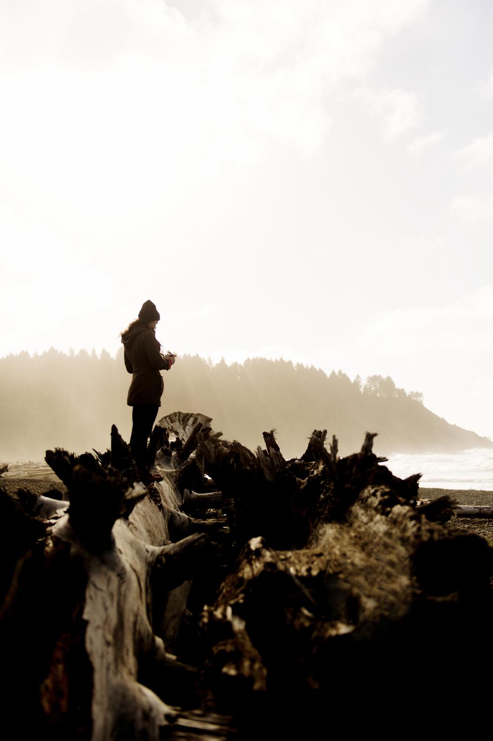 La Push Beach, Washington, USA