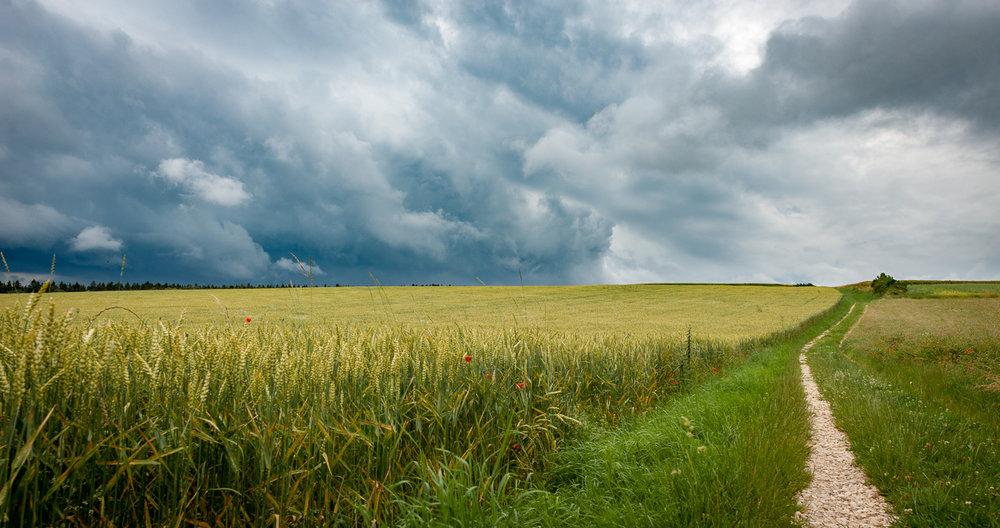 Rural Germany-9467.jpg