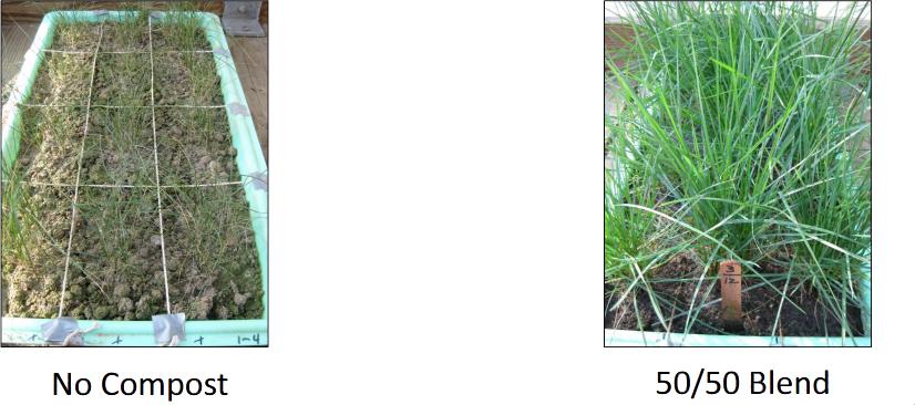 compost-comparison