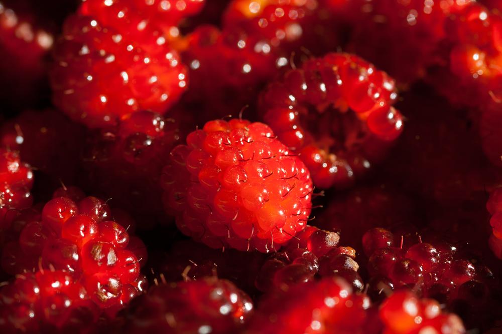 Da berries