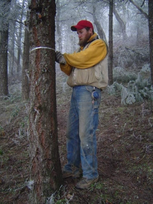 Jake Robinson, Yankee Creek Forestry