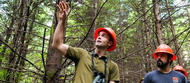 Matt Betts, professor in Landscape Ecology at Oregon State University, discusses forest management, biodiversity and pollinators. (Photo: Matt Betts)