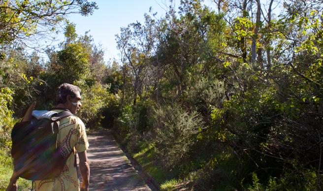 Indigenous Tour group Kadoo in bushland