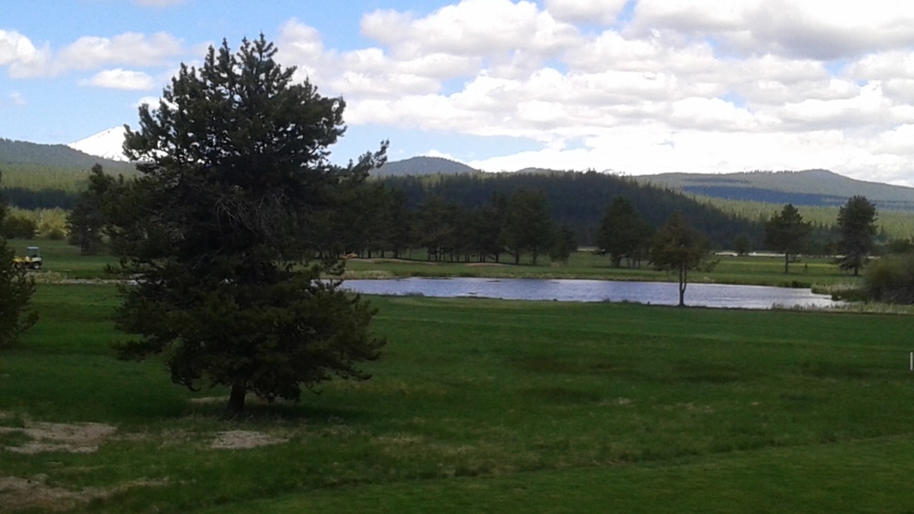 From my room at Sunriver Lodge (golf course had been shut down for repairs, I saw a barn owl and a porcupine on the paths around the course over the week I was there).