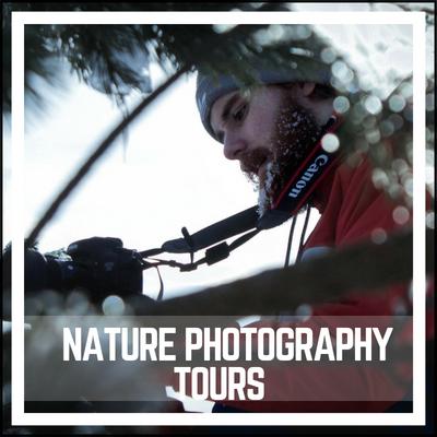 Nature-Photography-Tours-Oregon