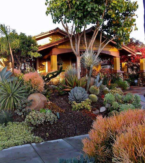 An example of xeriscaping in California