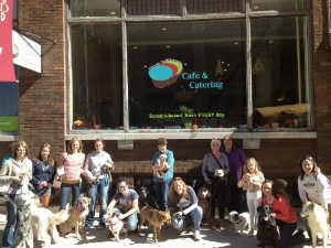 Bone Appetit Dog Friendly Food Tour hosted during National Dog Week.