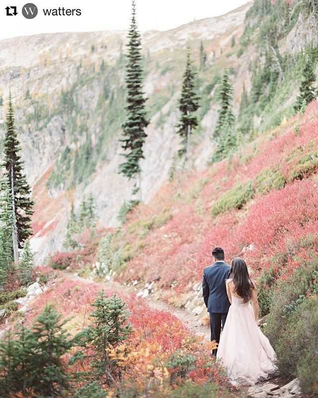 Inspirazione per iniziare la settimana 💍🙌🏼 #Repost @watters ・・・ When your dress coordinates perfectly with the beautiful Fall colors.  Photo by @hollycuaresma | #watterscarina #wattersahsan #blush #fallwedding #northerncascades #washingtonbride