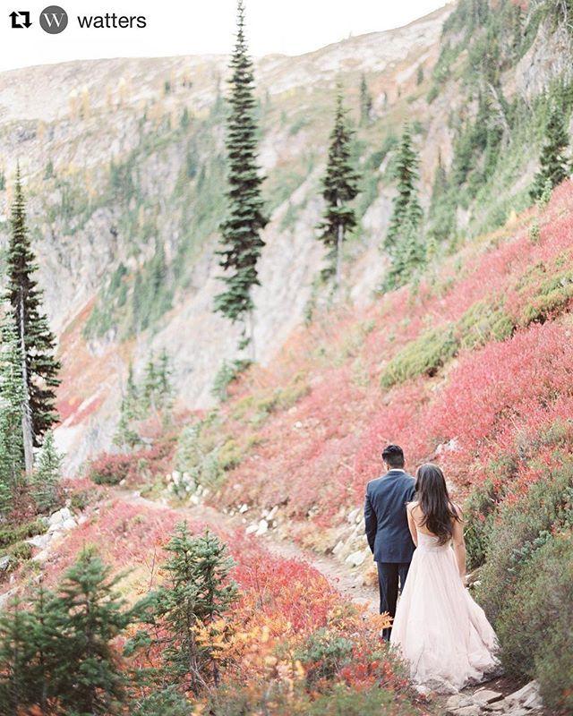 Inspirazione per iniziare la settimana 💍🙌🏼 #Repost @watters ・・・ When your dress coordinates perfectly with the beautiful Fall colors.  Photo by @hollycuaresma | #watterscarina #wattersahsan #blush #fallwedding #northerncascades #washingtonbride