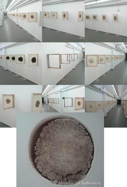 Natascha J.A. Rodenburg, Earthimprints.jpg
