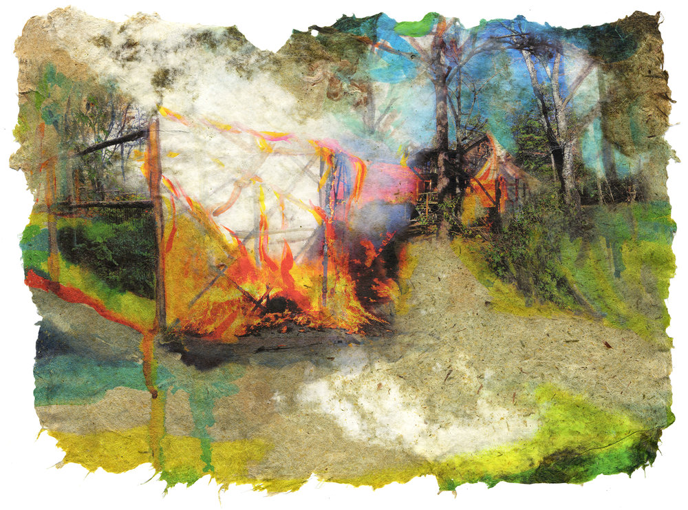 Garden Fire, 2017, Pigment print on handmade paper (cotton, daylily, hosta, bamboo and yucca), 16 x 22 inches