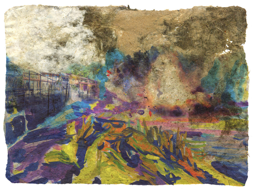 Yard Explosion, 2017, Pigment print on handmade paper (cotton, daylily, bamboo, hosta, and yucca), 17 1/2 x 23 3/4 inches