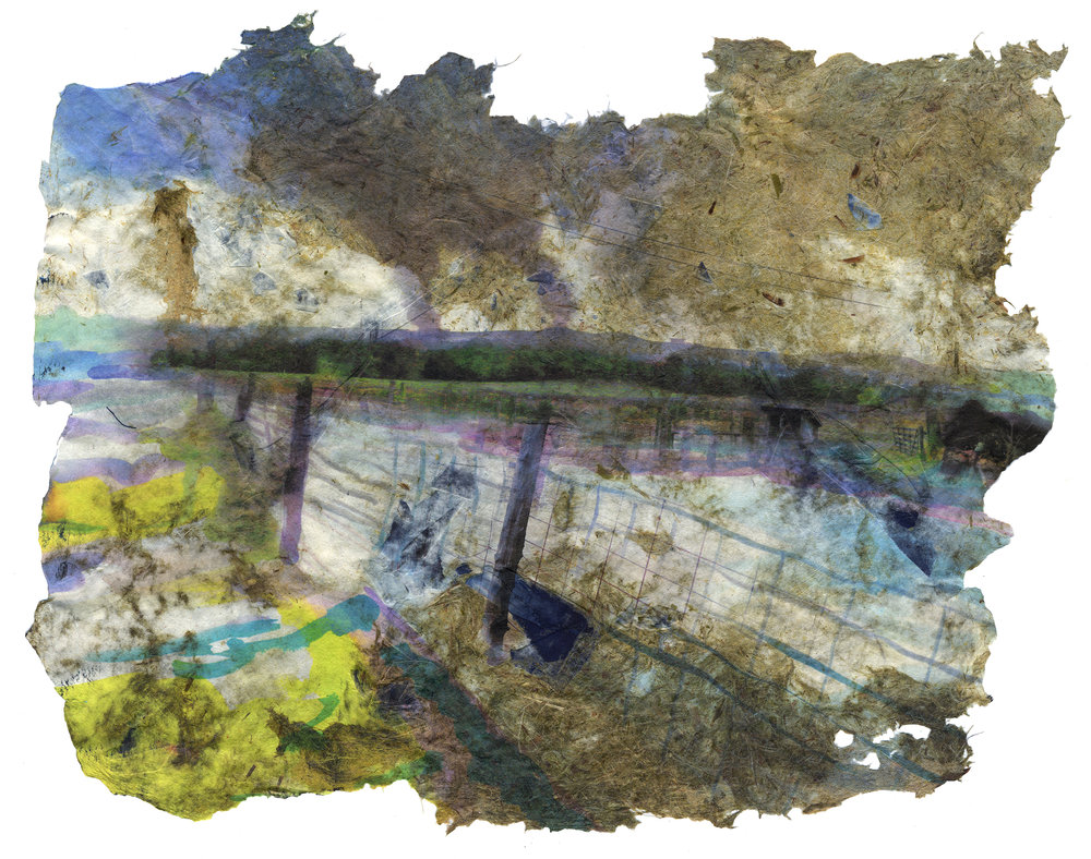 The Way We Came, 2017, Pigment print on handmade paper (cotton, daylily, bamboo, hosta, yucca, and indigo dyed cloth), 15 x 20 inches
