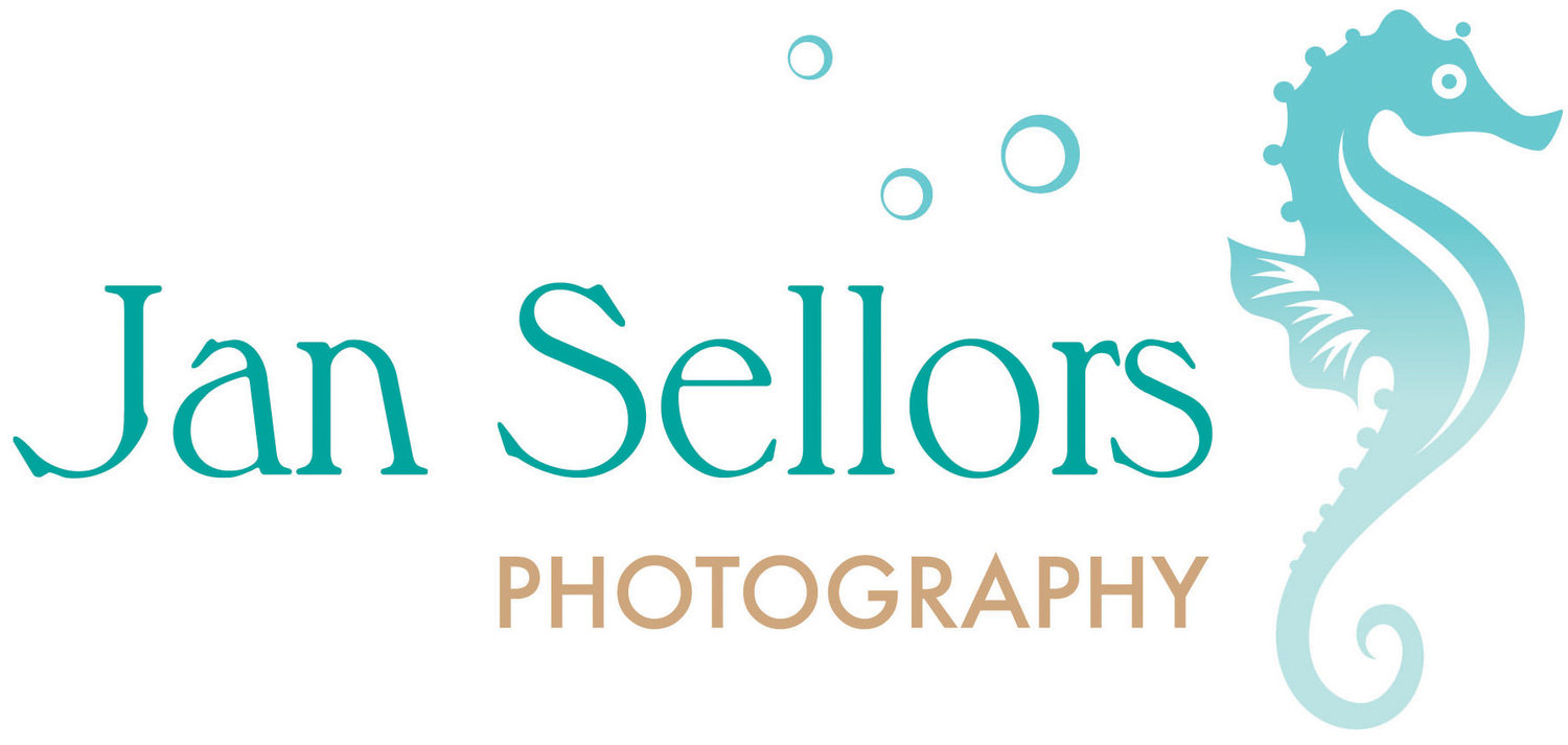 Jan Sellors Photography