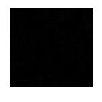 DSBNS-lee_logo.png
