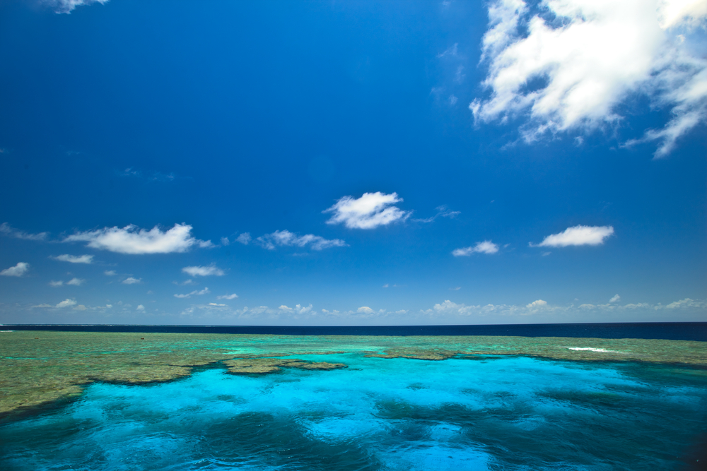 MV Monsoon reef panorama.jpg