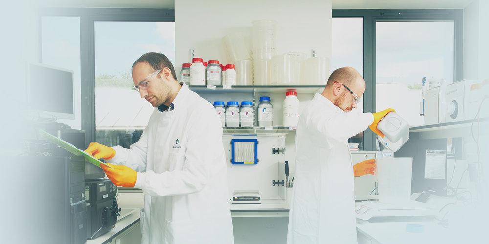 Lab_AtWork_107_.jpg