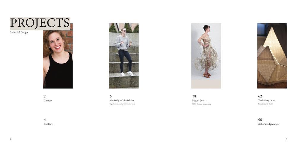 Fink Final PDF-03.jpg