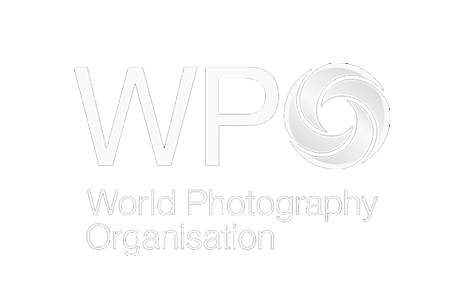 The WPO, organisers of the Sony World Photography Awards Exhibition at Somerset House 22nd April - 8th May 2016, provide a global platform for photographers to promote their work and receive wider exposure.