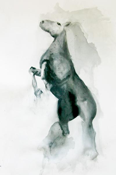 2012equineseriesweb.jpg
