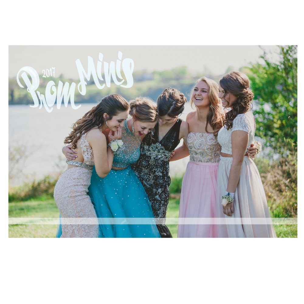 Mini prom sessions:      Single or couple 15 mins, 5+  images $25  Single or couple 30mins, 10+ images $50     Group 1 hour (5-6 couples) $150  Includes 1-2 individual poses,   1-2 couple poses, group photos of whole group, group of girls only, & group of boys only       Groups are about the same time and cost as individuals with additional group pose images.      Images delivered via online gallery as last year.   Prints available for a seperate fee!