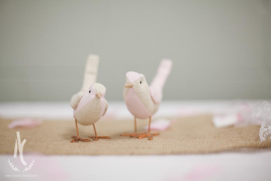 birdsong_0072