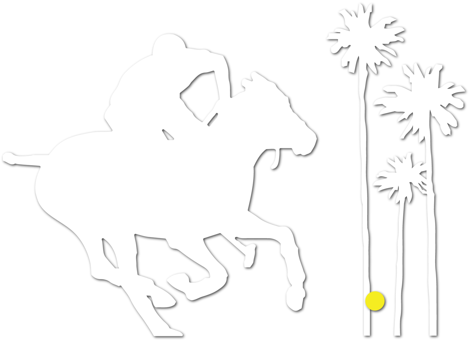 Palm City Polo