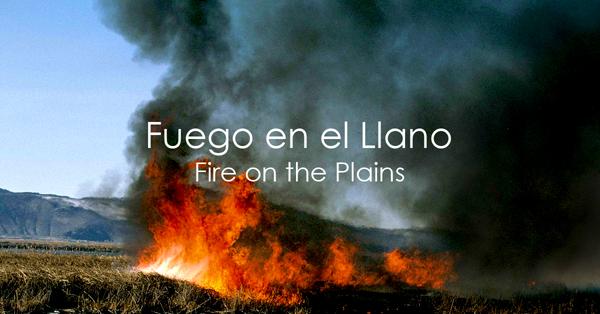 Fuego en el Llano.jpg