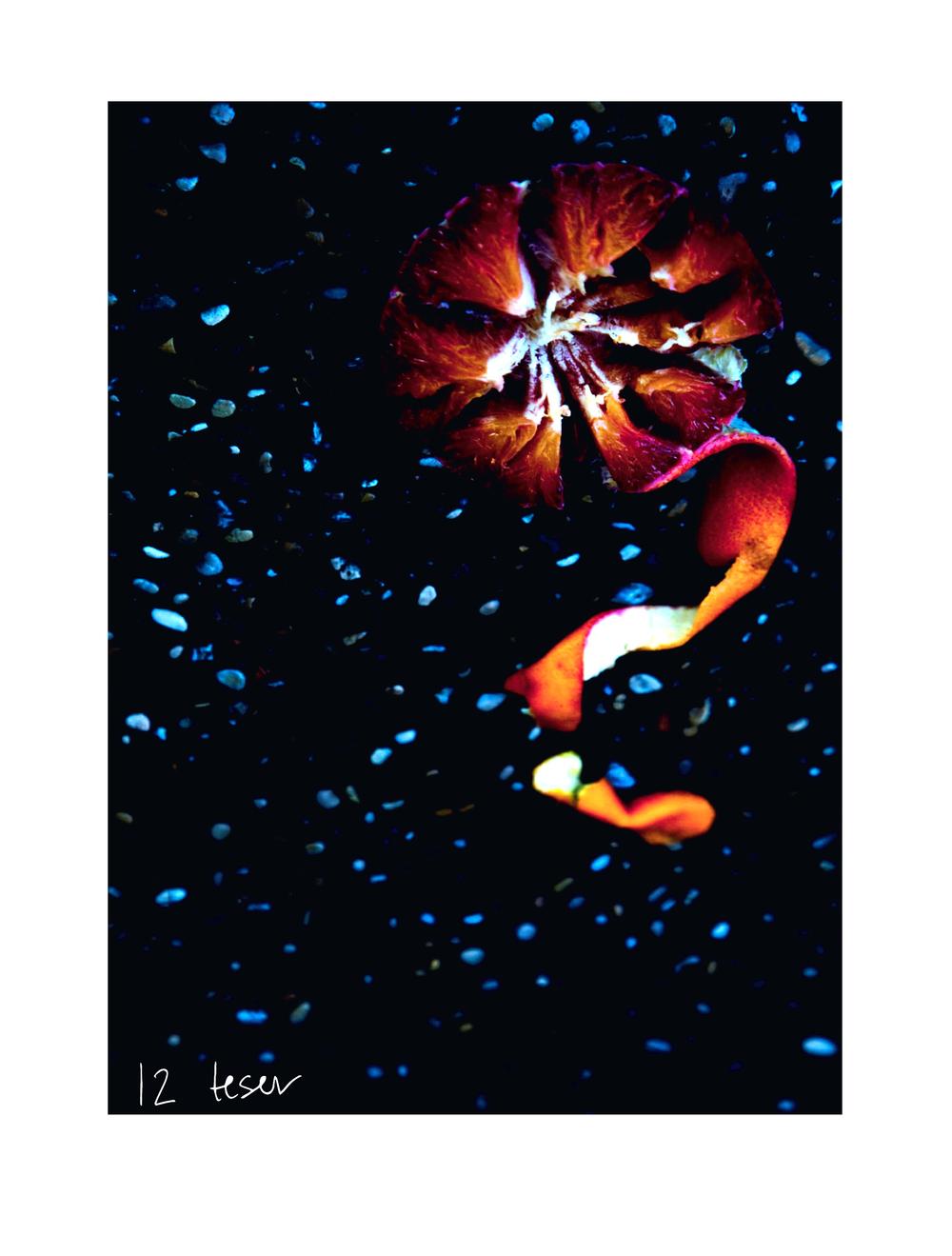 """Fra utstillingen """"12 teser - 12 thesis"""" FOTO: Åse-Marie Faldalen"""