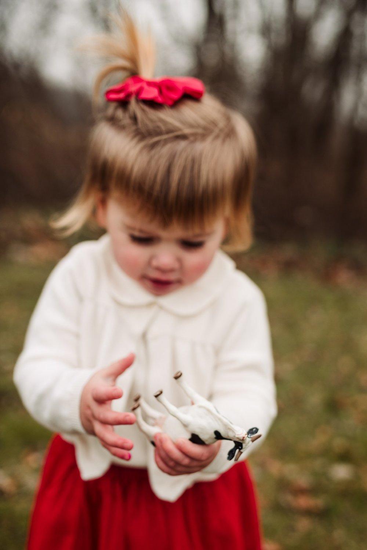 Sun Prairie Photography Burke Park WI Family cow.jpg