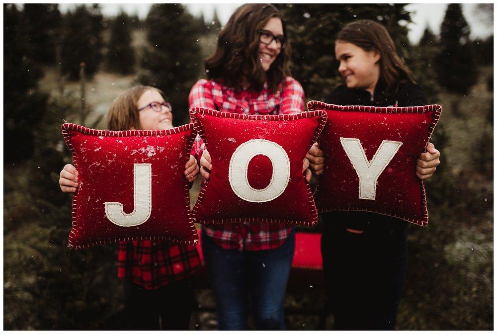 winter family photo session madison wisconsin.jpg