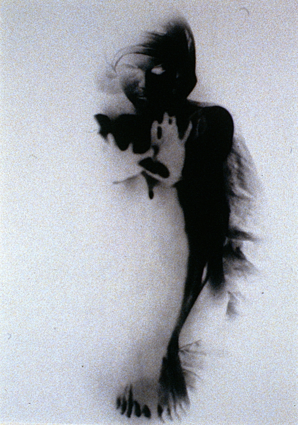 Figure Study , 1982, M. Isabel Roberts, photograph, 982.05.01